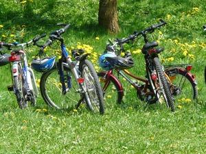 Jaki rower dla siedmiolatka kupić?